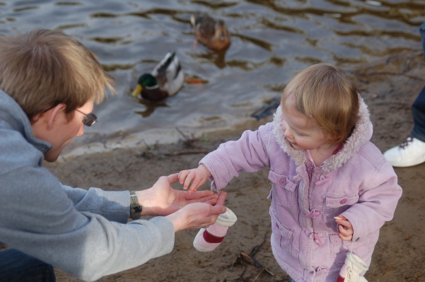 Feeding Daddy rather than the ducks!
